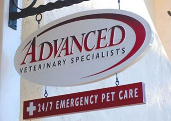advanced veterinary specialists vets in santa barbara california