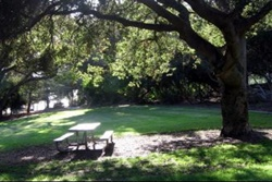 dog parks and hiking trails in santa barbara california