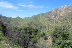rattlesnake canyon trails and dog parks in santa barbara